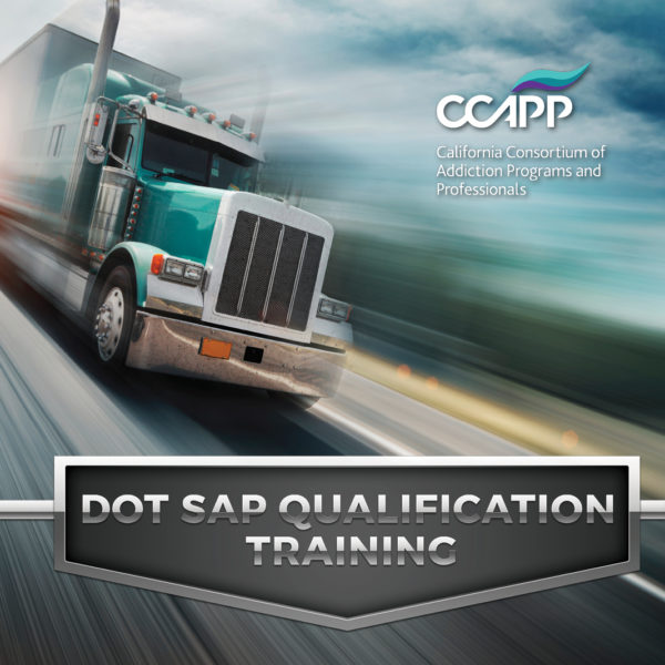 DOT SAP QUALIFICATION TRAINING